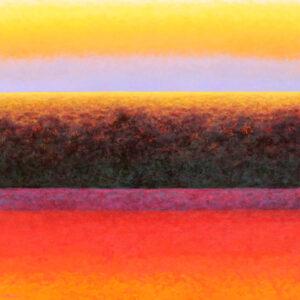 Grand-contre-jour-dore-100x100-EW-2013